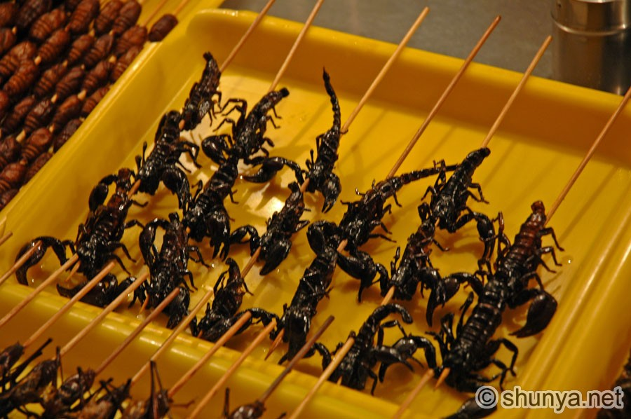 Chinese Food Scorpions